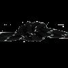 854 чёрно-серебрянный